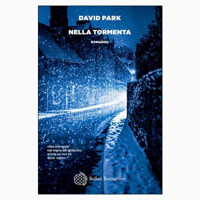 """La copertina del libro """"Nella tormenta"""" scritto da David Park e pubblicato da Bollati Boringhieri David Par"""