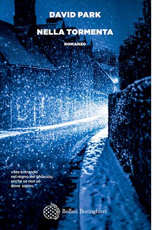 """La copertina del libro """"Nella tormenta"""" di David Park (Bollati Boringhieri)"""
