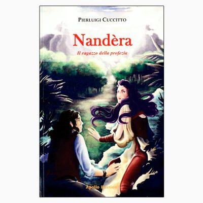 """La copertina del libro """"Nandèra"""", scritto da Pierluigi Cuccitto e pubblicato da Apollo Edizioni"""