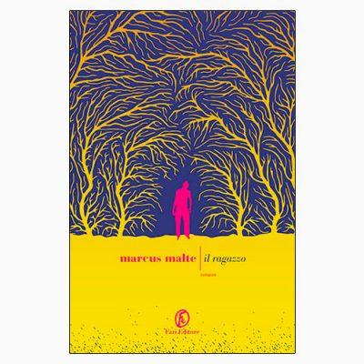 """La copertina del libro """"Il ragazzo"""", scritto da Marcus Malte e pubblicato da Fazi Editore"""