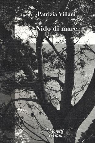 """La copertina del libro """"Nido di mare"""" di Patrizia Villani (Moretti & Vitali)"""
